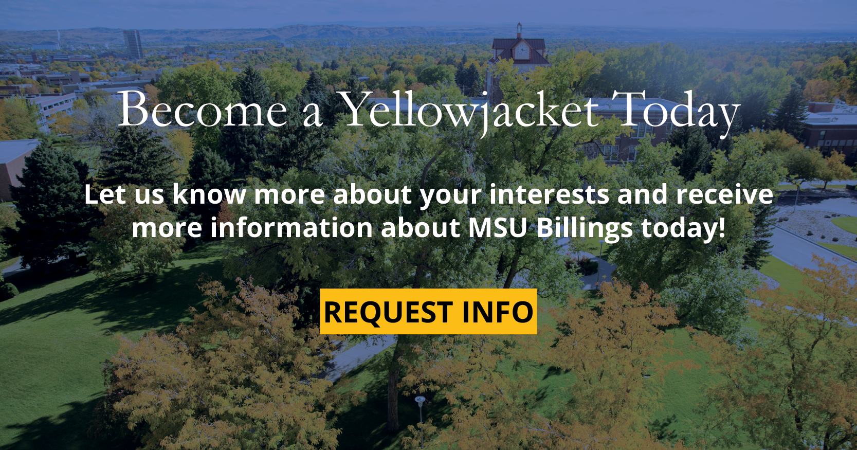 Become a Yellow Jacket