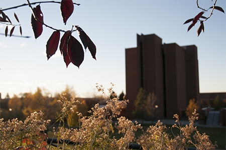 the MSUB university campus in fall