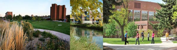 a collage of three photos of the MSUB university campus