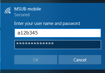 Enter your NetID and Password