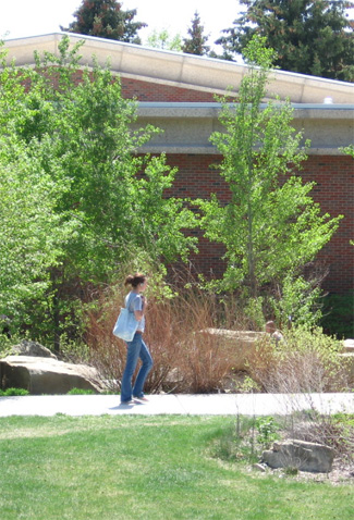 a student walks near Peaks to Plains Park and the Library on the MSUB campus