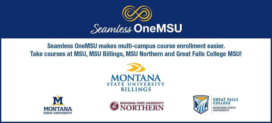 OneMSU logos