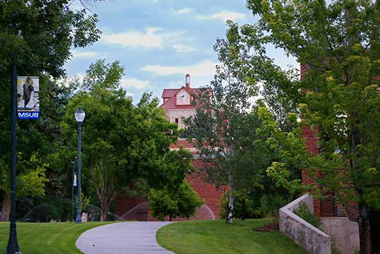 a photo of McMullen Hall taken from the west in summertime